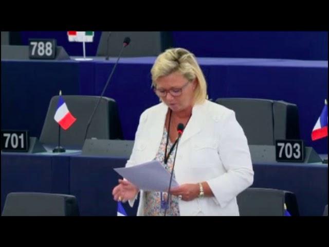 Sylvie Goddyn sur le plan pluriannuel pour les stocks démersaux de la mer du Nord