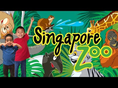Safari Adventures in SINGAPORE ZOO River Safari & Night Safari: Traveling with Kids