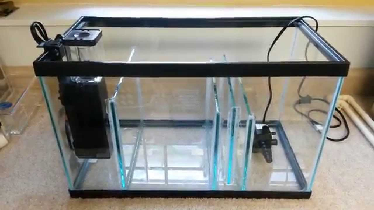 building a 10g sump system equipment youtube