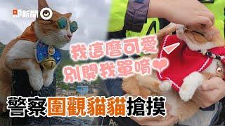橘貓太吸睛!警察圍觀「搶摸」網笑翻:別忘記工作XD|寵物動物|看新聞