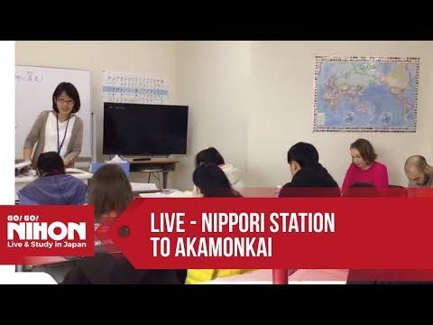 Japanese Lessons at Akamonkai Language School - Go! Go! Nihon Live Show