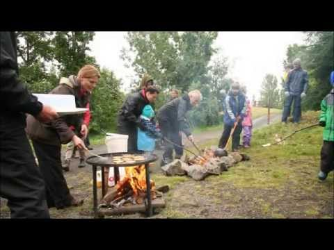 Icelandic Forestry at Times of Climate Change