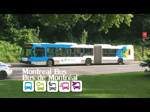 Montreal public transport (vol. 2 - Bus)