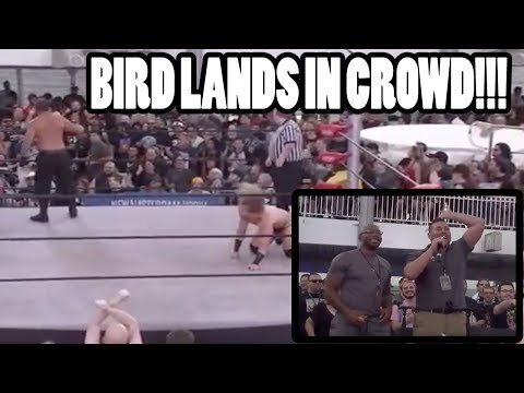 ROH: Bird Attacks Wrestling Match on Jericho Cruise - Colt Cabana & Jay Lethal REACT