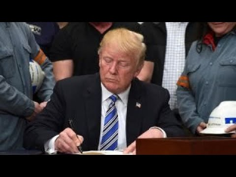 Trump reportedly to sign executive order ending birthright citizenship