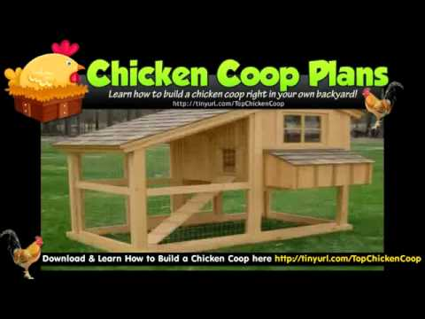 how to build a pvc chicken coop