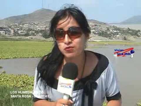 Vivian teve más - Humedales de Santa Rosa en Chancay