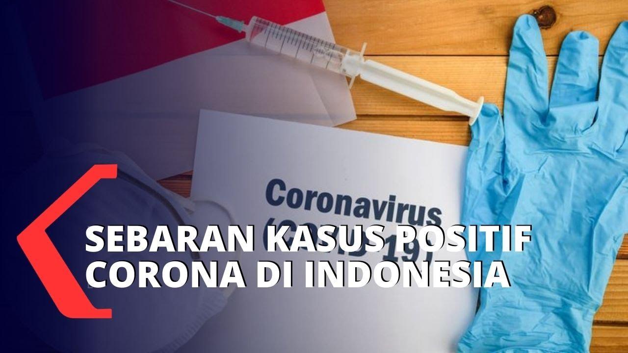 Sejauh Mana Sebaran Virus Corona di Indonesia?