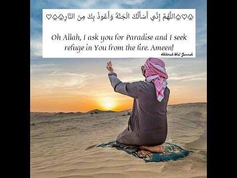 Al habib (The Loved One )  Talib Al habib Lyrics & Translation   YouTube