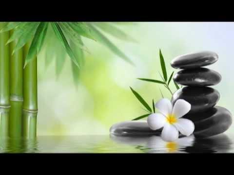 Lotus Blossom:7 Chakras Healing, Chakra Balancing and Opening, Kundalini Yoga
