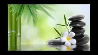 Lotus Blossom:  7 Chakras Healing, Chakra Balancing and Opening, Kundalini Yoga