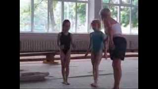 Тренировка по спортивной  гимнастике  (малыши).