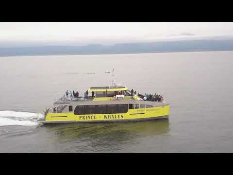 Prince of Whales Introduces New Vessel The Salish Sea Dream