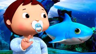 Baby Shark DANCE!   Nursery Rhymes & Kids Songs!   Videos For Kids   Animal FURRENZY!