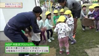 【スカサカ!ライブ】『丹羽 芝プロジェクト』に密着!(2017年6月16日放送)