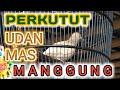 Suara Perkutut Lokal Udan Mas Manggung Raja Pancingan  Mp3 - Mp4 Download