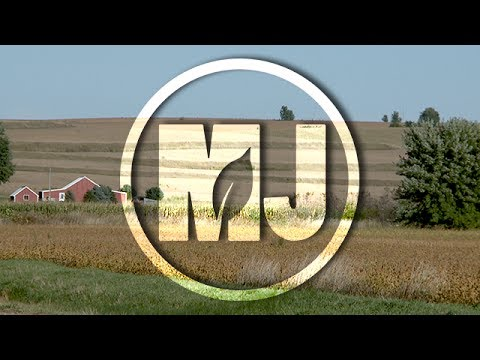 Off-Farm Income - David Widmar - July 21, 2017