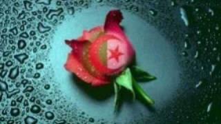 Repeat youtube video chab tayeb 2010 nti zawajti t ' haniti