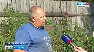Вести-Хабаровск. ДВ гектар Солнечный