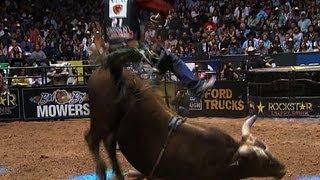 """Bushwacker"" bucks competitive bull riders at record rates"