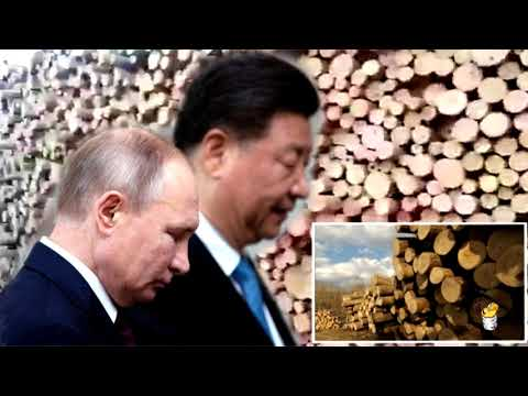 Экспансия Поднебесной: Китай