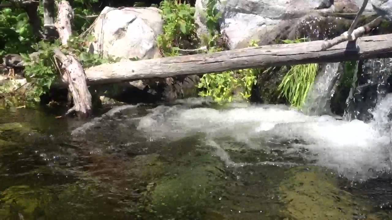 the bay stream