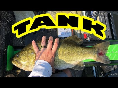 Kayak Bass Fishing Tournament - Tall Timber Outdoors - Kayak Bass Cashin
