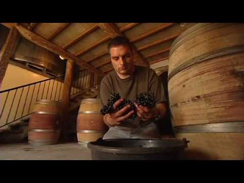 LCBO Discover, Wines Of The Rhone Valley, Part 3 Of 3.mov