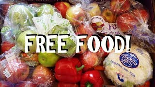 Free Food ~ Dumpster Diving for Groceries!!  How to Eliminate That Grocery Bill!!