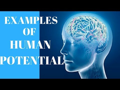 Examples Of Human Potential