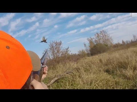 MN Pheasant Opener 2019- The Bird Tales #37