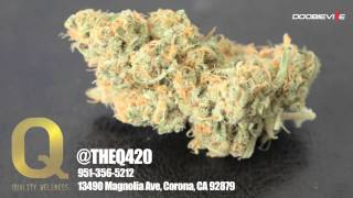 The Devin The Dude Strain Review - Crystal Comma Sativa