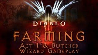Diablo 3 - Farming Guide Act 1 & Butcher Inferno (Solo Wizard)