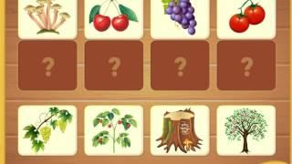 Изучаем овощи фрукты ягоды