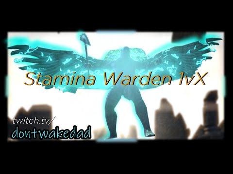 Stamina Warden PvP 1vX | ESO | Blackwood | Open World |