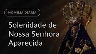 Solenidade de Nossa Senhora Aparecida (Homilia Diária.976)