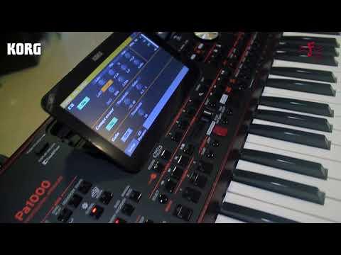 Buy Korg, Arranger Keyboard PA-1000 Online in India at Best Price