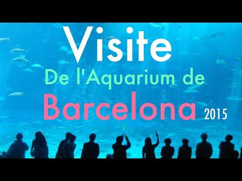 Visite Aquarium BARCELONA !