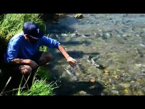 Adventure Science: Juneau Microplastic Project