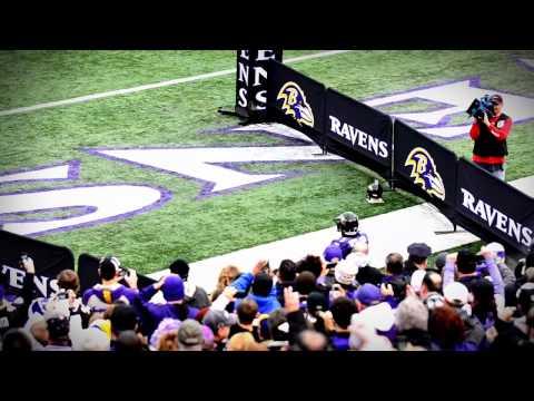 Baltimore Raven, Le