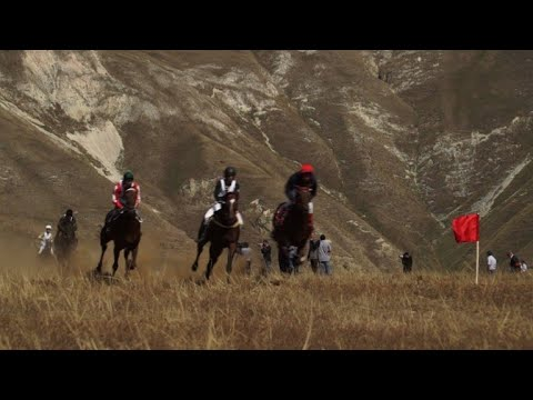AFP news agency: Horse race across Dagestan steppes to honour religious leaders