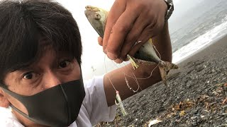 Sの魚釣り「早朝の平塚海岸でちびカンパチ1匹!」[2021年6月13日(日)]〜神奈川県平塚市〜