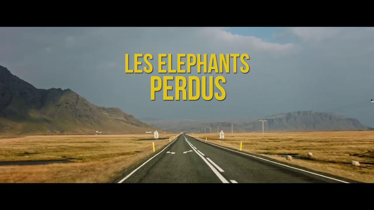 LES ELEPHANTS PERDUS - BA courte 5
