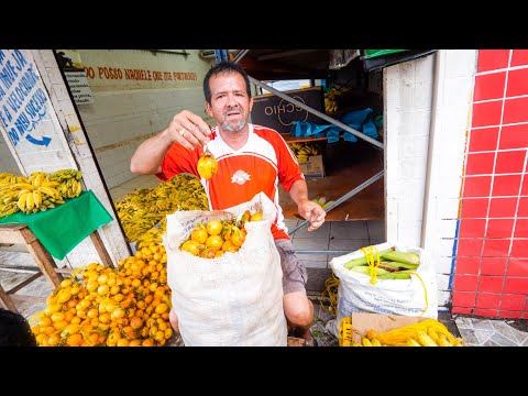 Tour Of Manaus, Brazil - Biggest City In AMAZON RAINFOREST | Wild Fruit, Attractions, And Dinner!