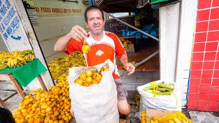 Tour of Manaus, Brazil - Biggest City in AMAZON RAINFOREST   Wild Fruit, Attractions, and Dinner!