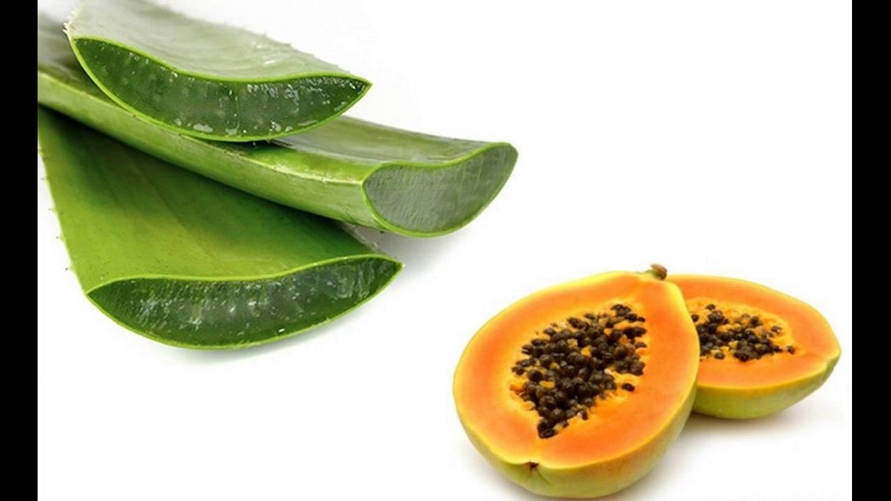 Image result for papaya pulp along with aloe vera