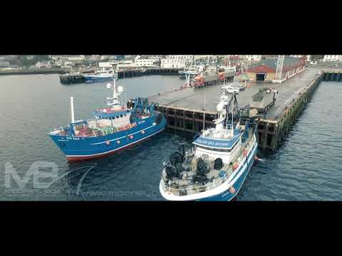 Killybegs First Catch Of 2019