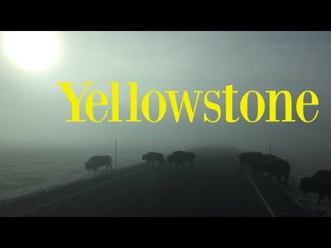 How NOT to visit Yellowstone! [RVlog #18]
