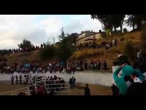 En Vivo Billete Verde en Mimbres  El jarocho y el Canelo 2014