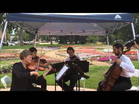 Theme from Brahms' 1st Symphony   Wedding Music